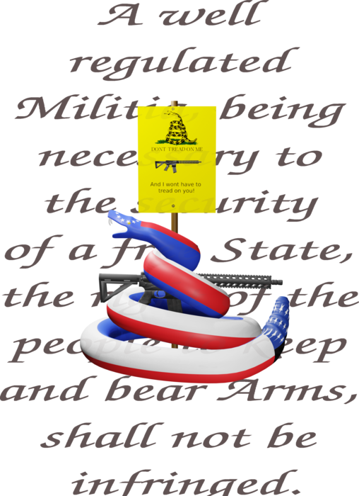 2nd amendment with updated Gadson flag