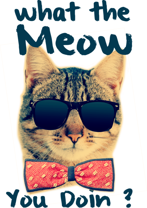 What The Meow