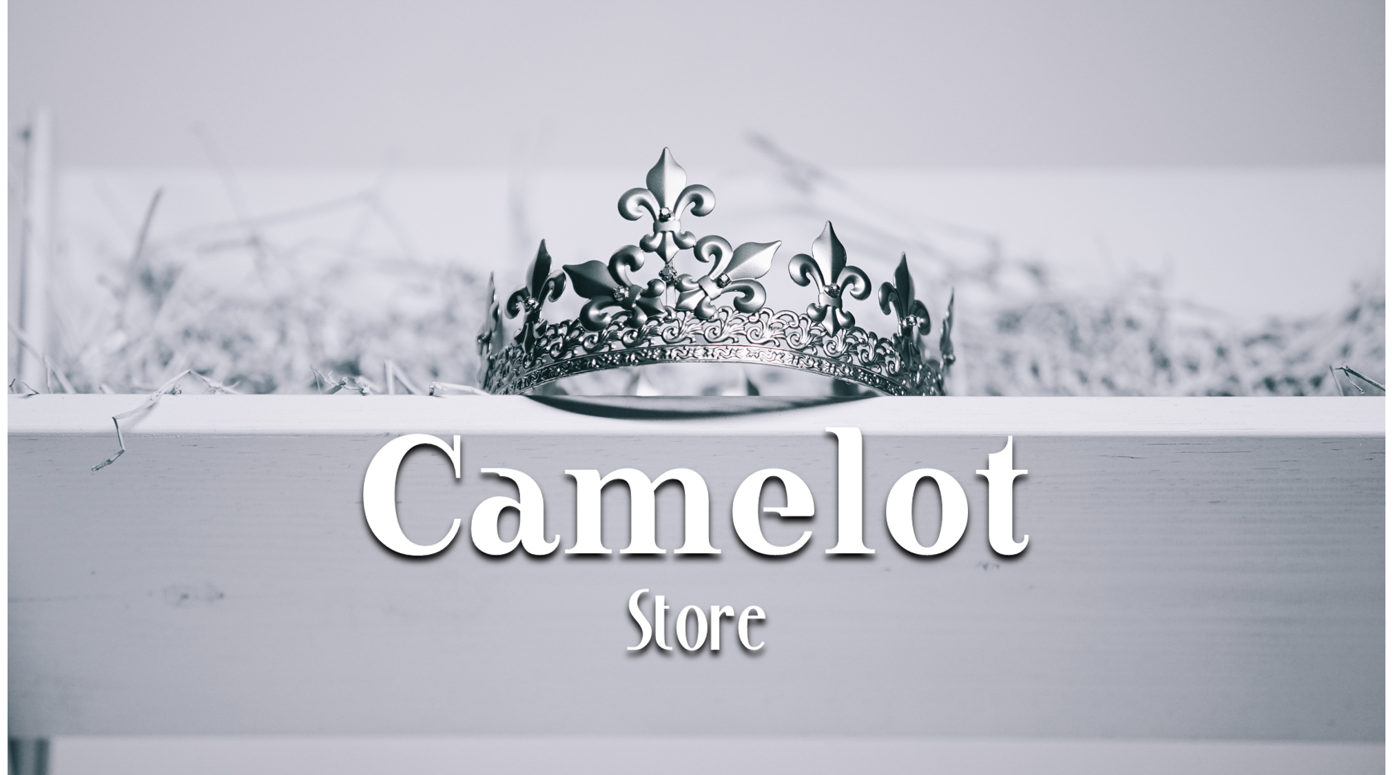 CamelotStore